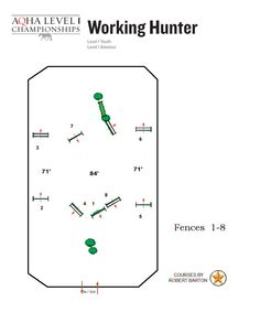 Working Hunter Show Pattern. Checkout the Level 1 Championship Show Patterns now available online!