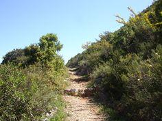 the path to saint George