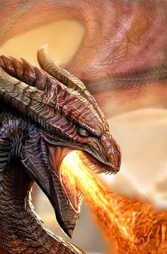 Dragons are mythical creatures that often appear in fantasy stories about knights and princesses. Dragon City, Dragon 2, Fantasy Dragon, Fire Dragon, Dragon Heart, Dragon Face, Black Dragon, Fantasy Kunst, Fantasy Art