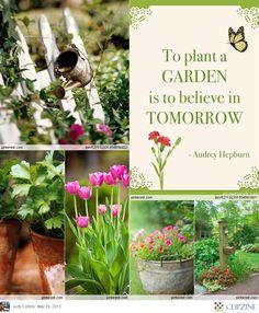 Gardening + Flowers