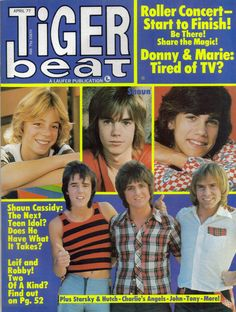 TIGER BEAT MAGAZINE APRIL 1977 LEIF GARRETT SHAUN CASSIDY BAY CITY ROLLERS