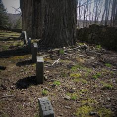 abandoned grave yard #forgottenseries