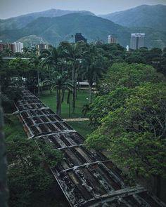 Universidad Central de Venezuela Fotografía cortesía de @cesarchen Etiquétanos en tus fotos de la Universidad utilizando el hashtag #YoVivoLaU y las compartiremos en nuestro perfil #LaCuadraU #YoVivoLaU #UCVve #UCV #UniversidadCentralDeVenezuela #LaCentral #LaCasaQueVenceLaSombra #Caracas #Venezuela #Universidad #CampusUCV #CampusUniversitario #Universitario #Ucevista