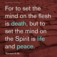 Romans Life and peace. The Book Of Romans, Romans 8, Scriptures, Bible Verses, Grace Based Parenting, Bible Words, Walk By Faith, Philippians 4, In The Flesh