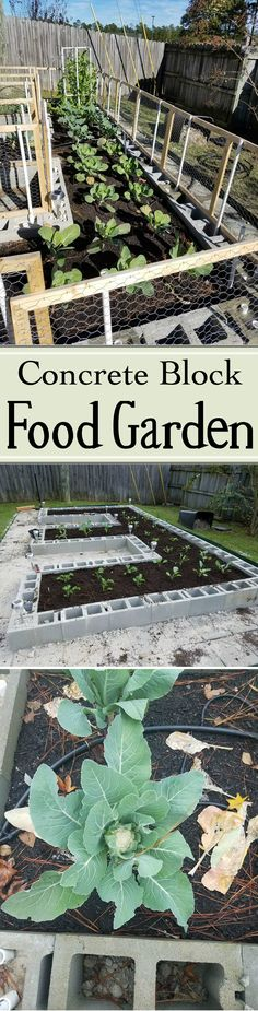 Build a Concrete Block Garden  #gardening #outside #summer