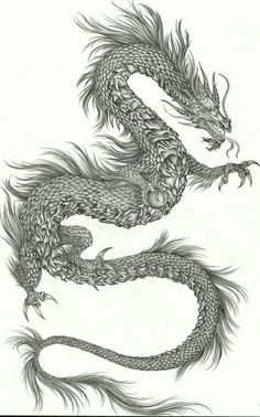 my dragon, new art - See this image on Photobucket.my dragon, new art - See this image on Photobucket. Dragon Tattoo Art, Dragon Tattoo For Women, Dragon Artwork, Dragon Tattoo Designs, Asian Dragon Tattoo, Chinese Dragon Drawing, Japanese Dragon Tattoos, Japanese Tattoo Art, Chinese Art
