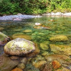 Lynn Canyon Park in North Vancouver, BC