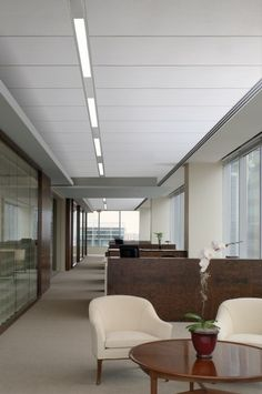 GE Lumination™ BL Series LED Luminaires were designed and tested for the Logix™ Ceiling System from USG to help architects create more inspired layouts in offices and other commercial spaces.
