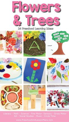 A YEAR of preschool lesson plans! - Learn with and about flowers and trees with these hands-on preschool lesson plans! Preschool Learning Activities, Preschool Themes, Spring Activities, Infant Activities, Abc Learning, Preschool Classroom, Pre K Lesson Plans, Lesson Plans For Toddlers, Preschool Lesson Plans