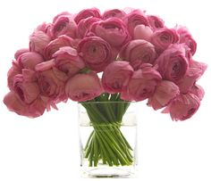 Pink Ranunculus one of my favorite flowers