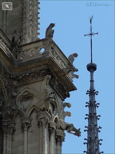 Picture Of Chimeras Statues At Notre Dame Cathedral In Paris