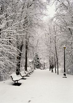 Leavenworth, Washington snowfall 2
