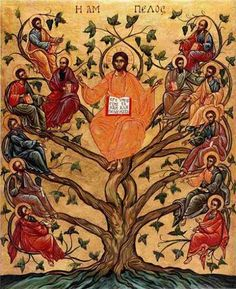 Pictures showing Jesus as the True vine - Yahoo Search Results Yahoo Image Search Results Religious People, Religious Icons, Religious Art, Ocd, Jesus Tree, True Vine, Byzantine Icons, Orthodox Icons, Renaissance Art