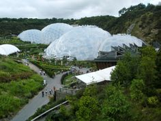 The Eden Project - the worlds largest greenhouse, Cornwall, UK Large Greenhouse, Greenhouse Effect, Stuff To Do, Things To Do, Eden Project, Roadside Attractions, Biomes, Green Life, Small World