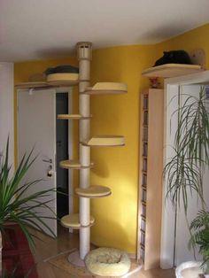 Catwalk Selber Bauen kratzbaum selber bauen diy kratzbaum kletterwand für katzen