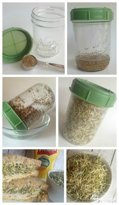How to Grow Alfalfa Sprouts in 3 Days! I love sprouts!