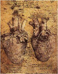 Leonardo da Vinci, Heart diagram, c.1510