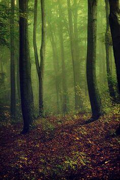green mist by ~tadzio89