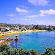 15 Incredible Harbour Beaches Everyone In Sydney Should Know About