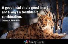 Nelson Mandela Quotes - BrainyQuote