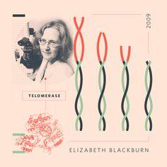 La bioquímica Elizabeth Helen Blackburn (1948) nació un 26 de noviembre
