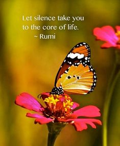 Let silence take you to the core of life. ~ Rumi poetry