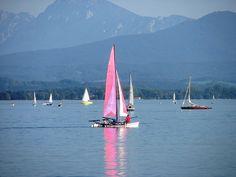 Pink Beauty..., via Flickr.