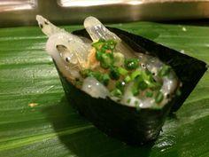 Japanese icefish