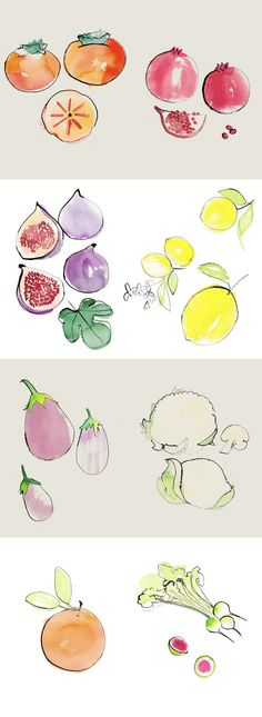 Illustrations for Eat-Drink-Garden by Bernadette Pascua