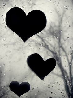 My heart is a window /// Take heed therefore that the light which is in thee be not darkness.Luke cross reference calling good evil and evil good. I Love Heart, With All My Heart, Happy Heart, My Love, Heart Wallpaper, Love Wallpaper, Iphone Wallpaper, Heart In Nature, Heart Art