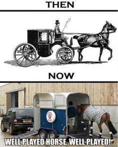 Horse emancipation