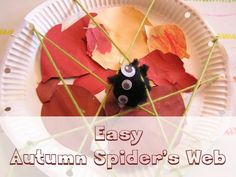 easy autumn spider's