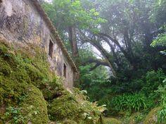 Convento dos Capuchos,Sintra,Portugal