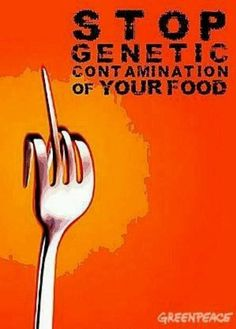 The protest against Genetically Modified Organisms (GMO's) and Monsanto!
