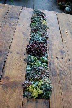 DIY Pallet Succulent Table   99 Pallets