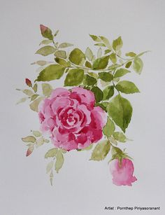 Roses Flower Painting,Flowers Watercolor Print from Original Flora arts ,arts inspiration & décor no. 15