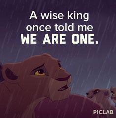 Super Wallpaper Disney Lion King Circle Of Life Ideas Kiara Lion King, Lion King 1, Lion King Movie, Disney Lion King, Disney Memes, Disney Quotes, Lion King Quotes, King Picture, Le Roi Lion