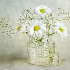 vase of white daisies centerpiece