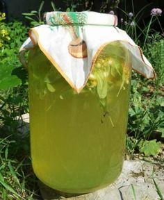 Липовый лимонад. В жару — самый лучший напиток! | Женские темы
