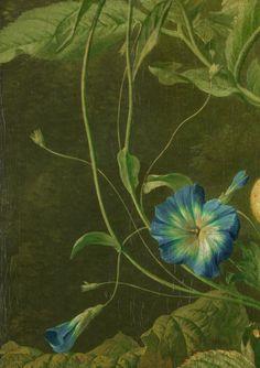 nataliakoptseva:  Wybrand Hendriks - Fruit, Flowers and Dead Birds Detail