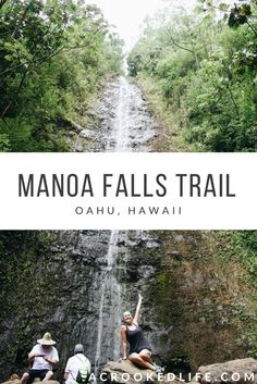 Manoa Falls is a beautiful waterfall hike located right outside of downtown Honolulu and is perfect for all skill levels! Click the image to read more about this Oahu waterfall. | Oahu, Hawaii | Oahu Living | Oahu Hikes | Oahu Waterfalls |