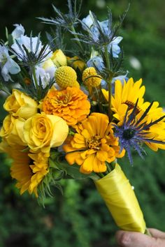 Bright and happy wedding bouquet. Designed with bright yellow sunflowers, zinnias, roses, and craspedia, with a touch of blue delphinium and thistle. By Backyard Garden Florist.