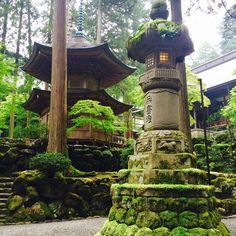 #Templo #budista #Eiheiji #Fukui #Japan #Japon #budismo #vacaciones #musgoeverywhere