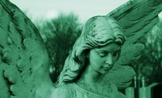 The rise of the angel investor (infographic)   VentureBeat