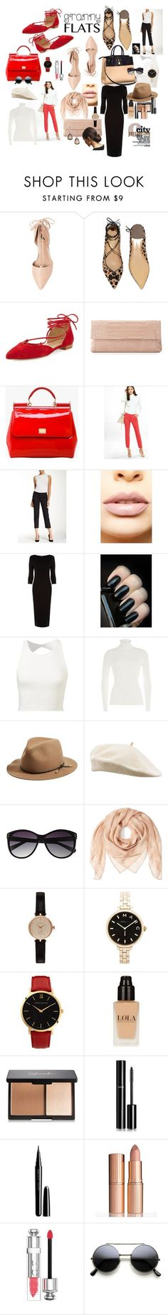"""Not Your Granny's Flats"" by lulu13nyc ❤ liked on Polyvore featuring Ava & Aiden, Salvatore Ferragamo, Stuart Weitzman, Louis Vuitton, Nancy Gonzalez, Dolce&Gabbana, Express, Susina, LASplash and Warehouse"
