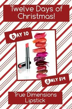 On the 10th Day of Christmas, my Mary Kay Consultant gave to me. www.marykay.com/orhile