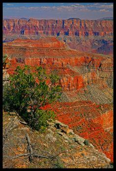 Roosevelt Point, Grand Canyon National Park, Arizona