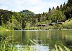 Tipps für Niederösterreich I 1000things - wir inspirieren Vineyard, Outdoor, Road Trip Destinations, Environment, Tips, Outdoors, Vine Yard, Vineyard Vines, Outdoor Living