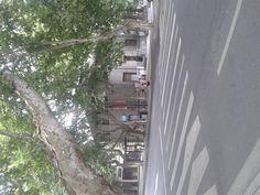 Nanshan Road of West Lake Scenic Area - http://www.mildchina.com/hangzhou-travel/nanshan-bar-street.html