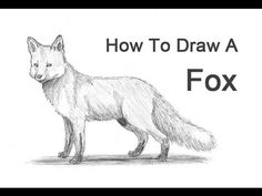 Visit http://www.How2DrawAnimals.com or my channel for more animal drawing tutorials and don't forget to PAUSE the video after each step to draw at your own ...